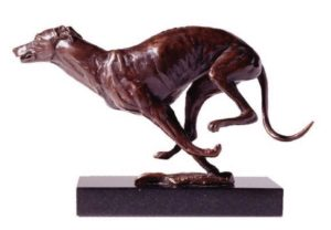 Greyhound chasing